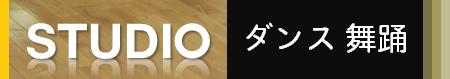 エアロビクス 民踊 フォークダンス バレエ 大人 成人 シニア 初心者 名古屋