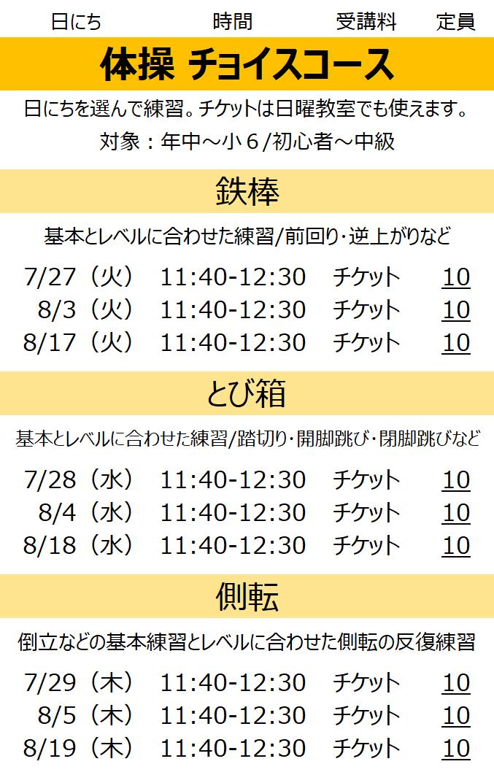 夏休み スポーツ教室 鉄棒 とび箱 側転 チケット制 名古屋市
